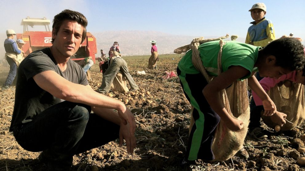David Muir traveled to Lebanon's border with Syria, reporting on the thousands of children working in the fields to help their families survive.