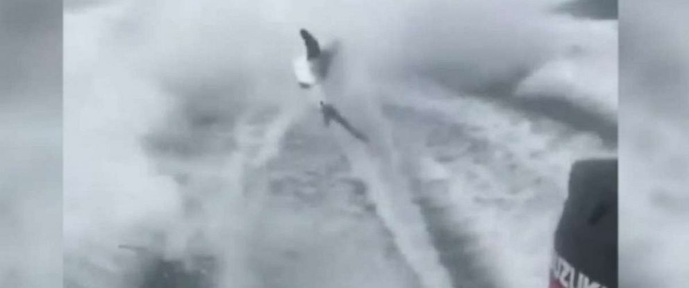 The three men seen dragging this shark behind their boat have been charged with animal cruelty.