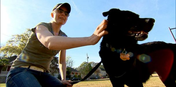 Some Pet Owners Game The Emotional Support Animal System To Fly Pets For Free Abc News