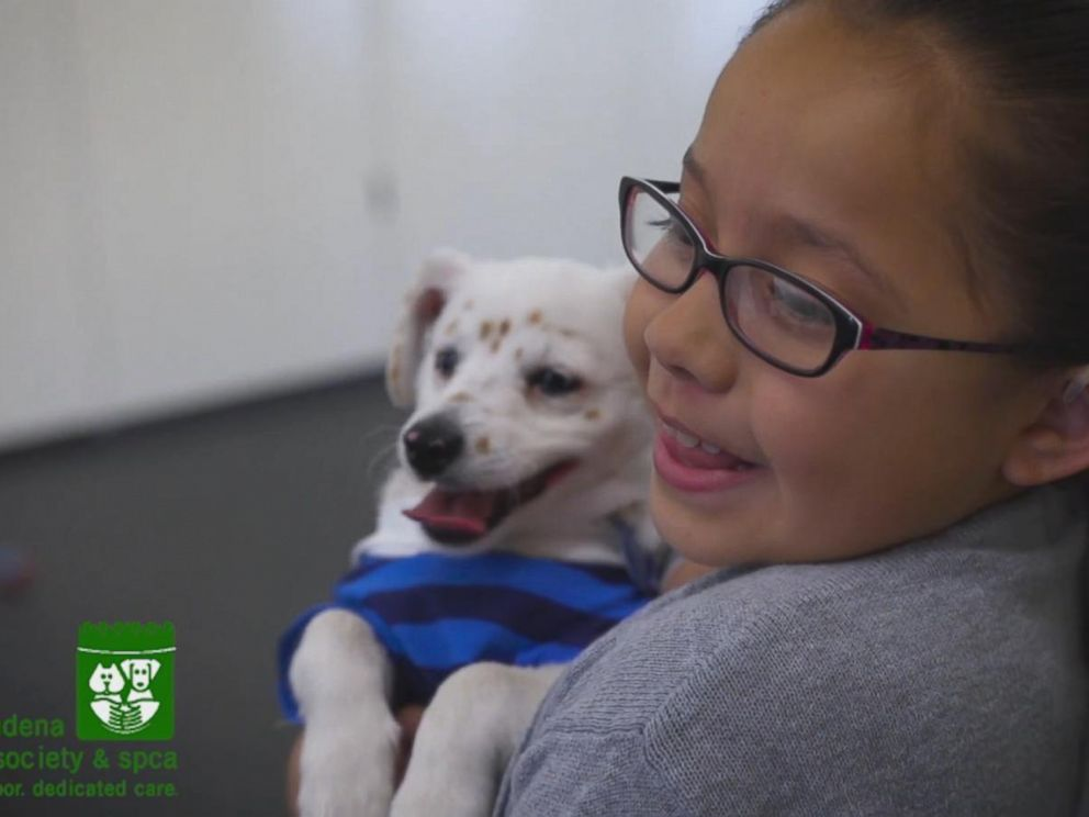 PHOTO: Julia, who is deaf, shares a special bond with her dog Walter, who is also deaf, according to the Pasadena Humane Society and SPCA.