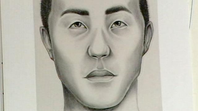 PHOTO:Police sketch of suspected Gilgo Beach serial killer.