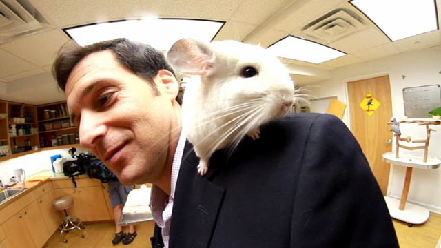 PHOTO:ABC News Correspondent John Berman with one of the animals at New Yorks Center for Avian and Exotic Medicine.