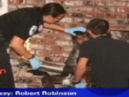 Video: California boy rescued from chimney.
