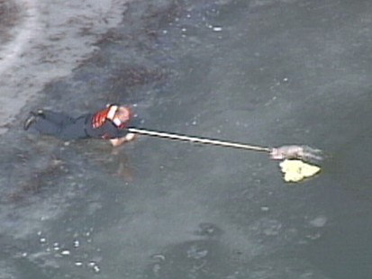 Video: Bystanders rush to save woman and her dog from frozen pond.
