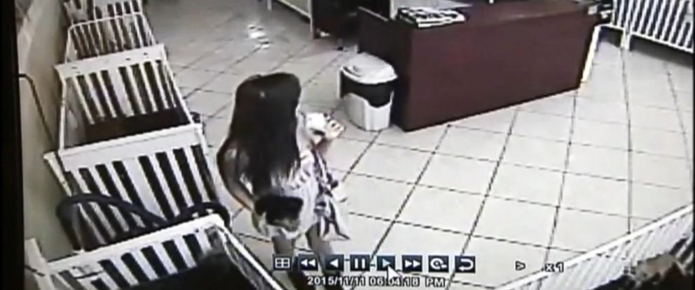 """PHOTO: Surveillance footage from """"The Puppy Stop"""" in Orlando, Fla. shows Carolina Mejia Urbina , 25, taking a $1,300 Yorkshire Terrier puppy, stuffing it in her purse and leaving the store without paying on Nov. 11, 2015."""