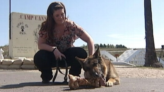 Retired Marine Dog Reunited with Original Handler