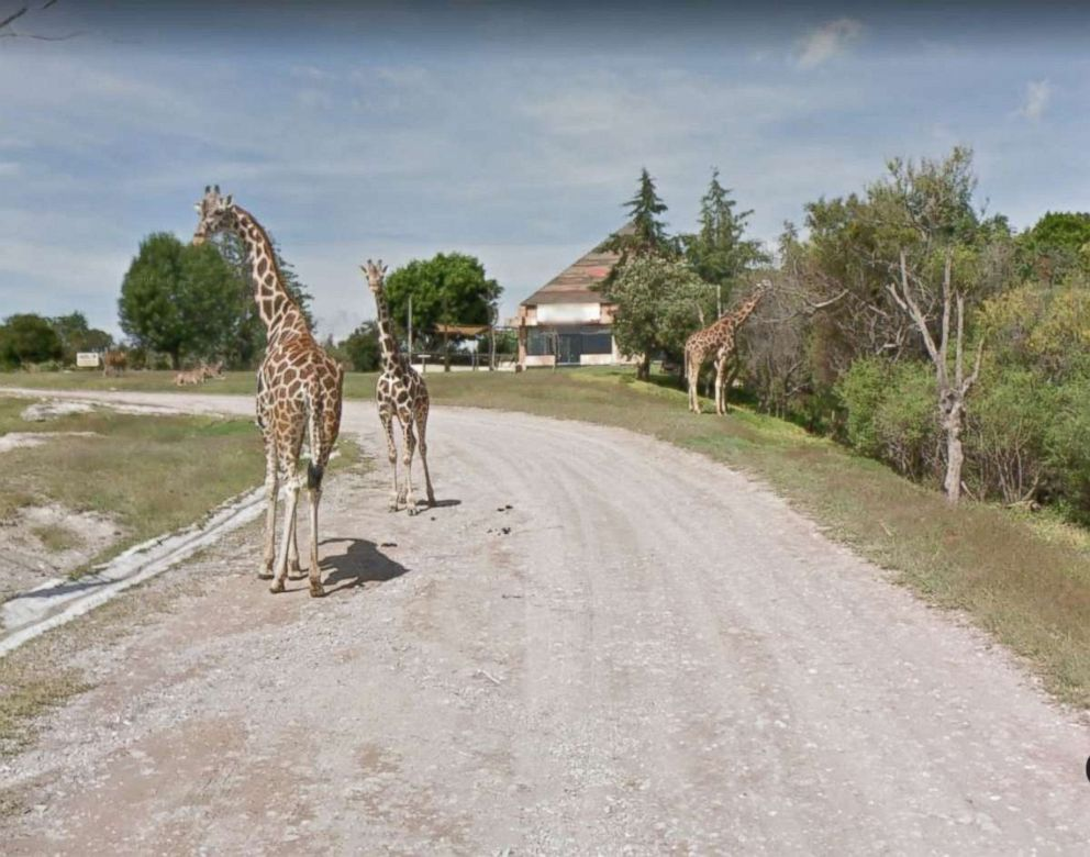 PHOTO: Africam Safari in Puebla Mexico road seen pictured in this undated Google Maps image.