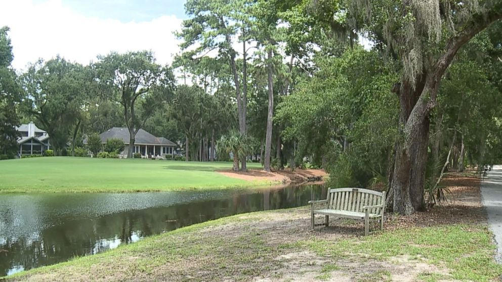 Witnesses saw a person being attacked by an alligator near a golf course at Sea Pines Plantation, a gated community on Hilton Head Island, South Carolina, said Beaufort County Sheriff's Office spokesman Capt. Bob Bromage.