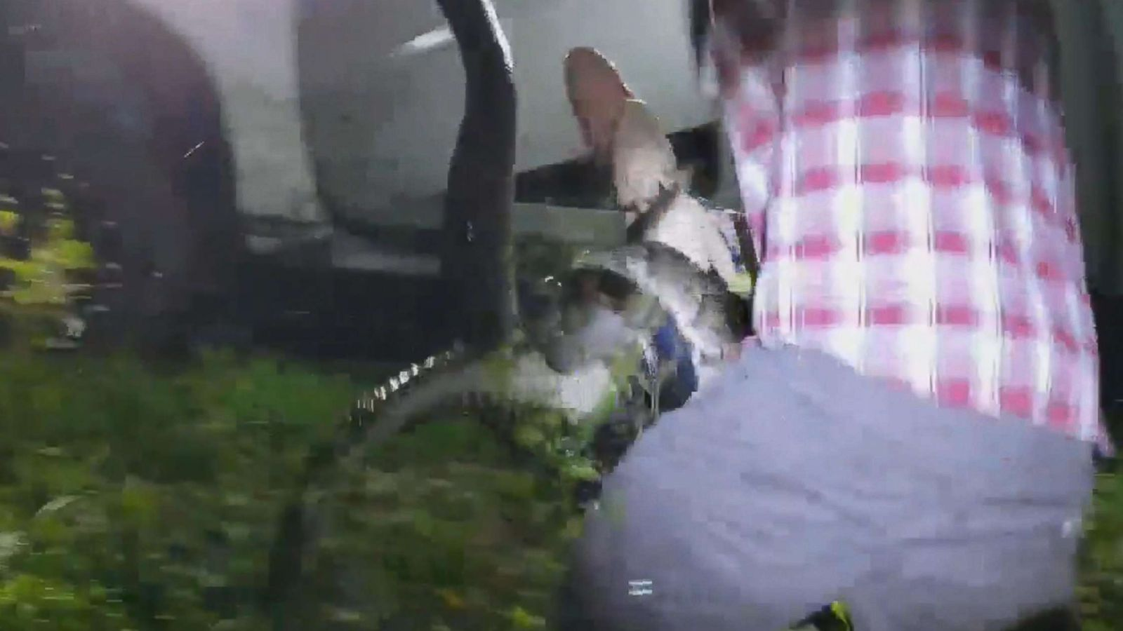 Python hunter rescues 4-foot alligator from the grip of a 10-foot