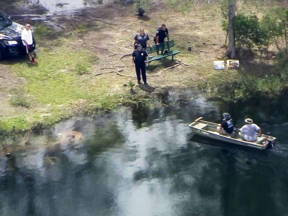 PHOTO: Police in Davie, Fla., were searching for a missing woman who may have been attacked by an alligator.