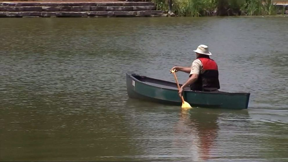 PHOTO: Officials looking to trap alligator spotted in Humboldt Park Lagoon in Chicago.