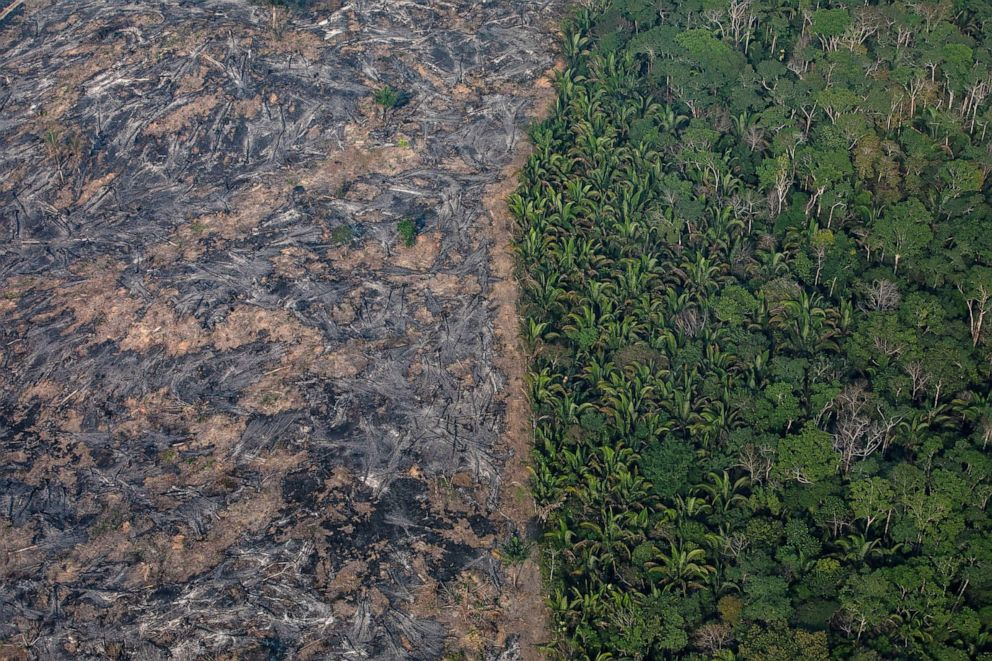 PHOTO: A section of the Amazon rain forest that has been decimated by wild fires is seen, Aug. 25, 2019 in the Candeias do Jamari region near Porto Velho, Brazil.