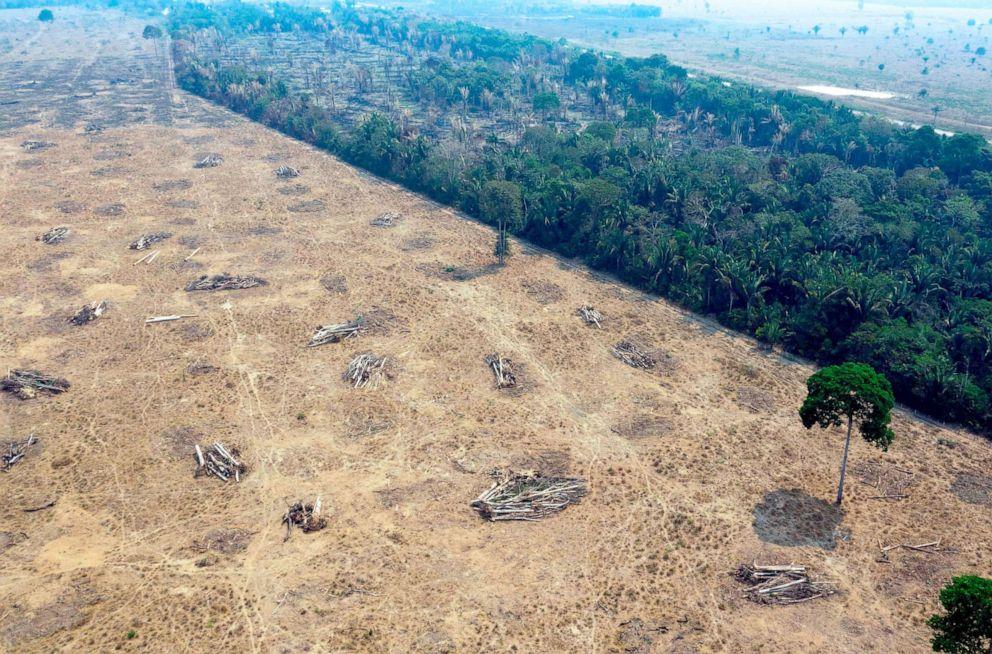 PHOTO: Burnt areas of the Amazon rainforest, are pictured near Porto Velho, Rondonia state, Brazil, Aug. 24, 2019.