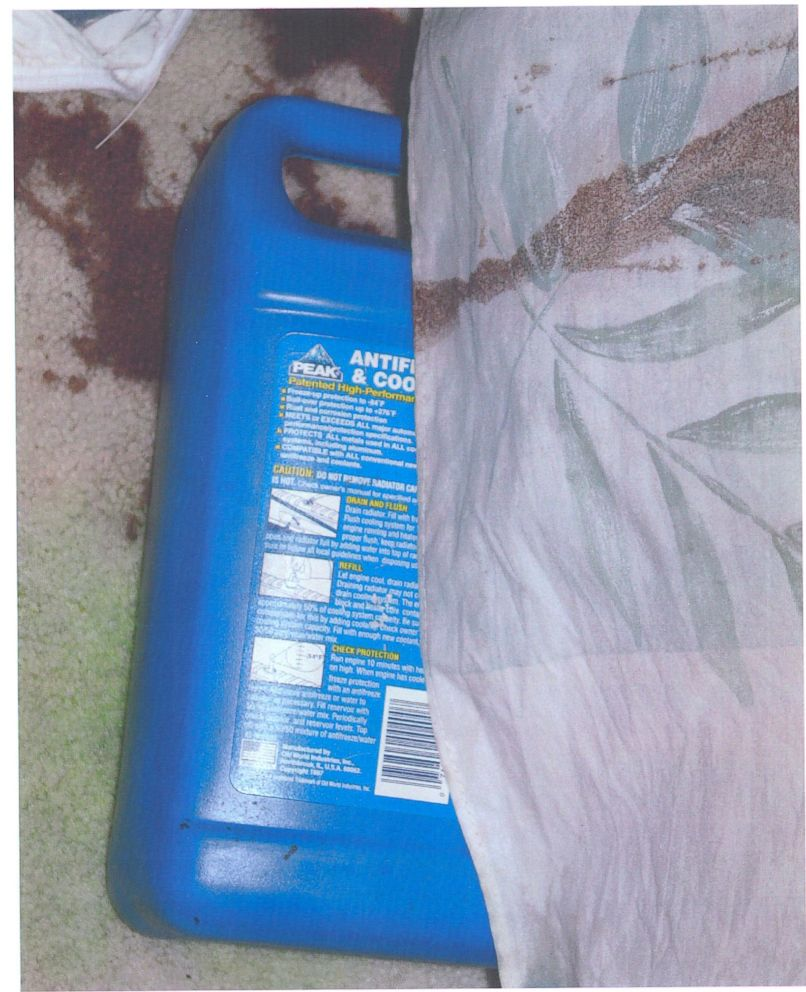 Police found a bottle of antifreeze with its top off beneath the bed where David Castor was found dead.