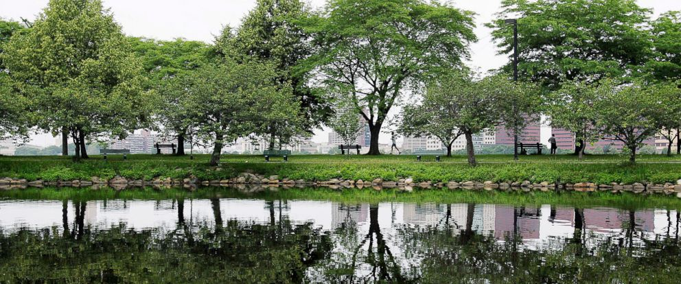 In this June 30, 2005, file photo, trees are reflected in still water on the Esplanade along the Charles River in Boston.