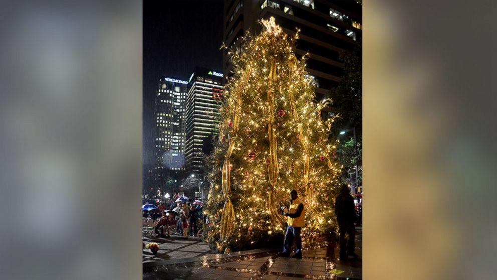 Christmas Linn Park 2020 Crazy Price Differences for Same Christmas Trees   ABC News
