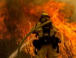PHOTO: A firefighter battles the wildfire near the farmland along a hillside in Point Mugu , Calif. Friday, May 3, 2013.