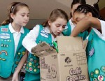 PHOTO: Girl Scouts sort through a case of Girl Scout cookies.