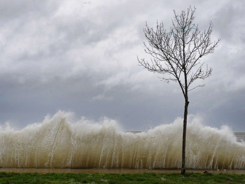 PHOTO: In this file photo, storm surge hits a small tree as winds from Hurricane Sandy reach Seaside Park in Bridgeport, Conn., Oct. 29, 2012.