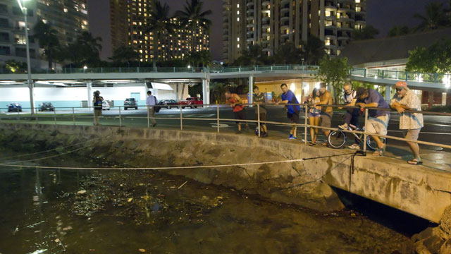 PHOTO: Visitors and Oahu residents watch the water level in the Ala Wai Harbor waiting for the arrival of a tsunami Saturday, Oct. 27, 2012, in Honolulu.