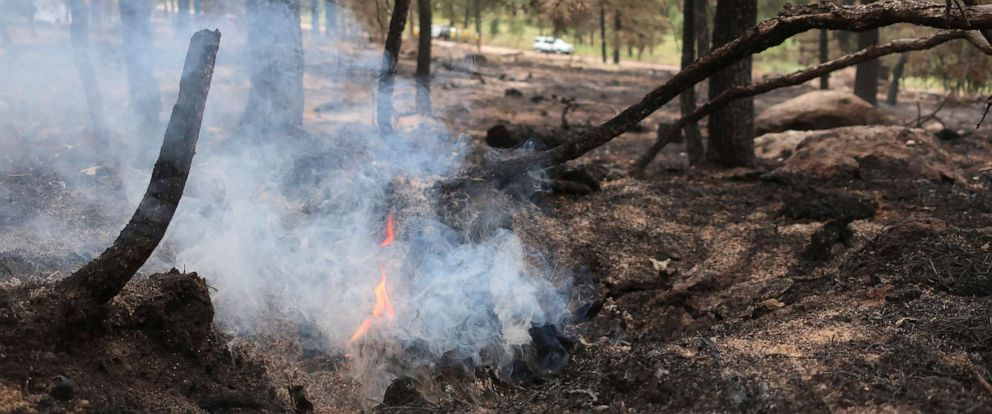 PHOTO: A tree stump smolders in an area scorched by fire in the Coconino National Forest near Flagstaff, Ariz., Thursday, July 25, 2019.