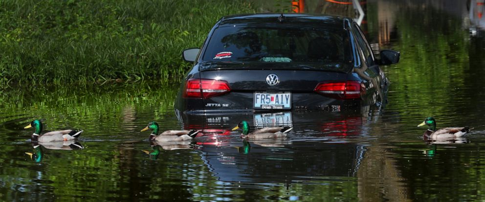 PHOTO: Ducks pass a submerged car in the flooded parking lot of the Cedar Creek Lodge apartments in Affton, Mo., as water from the River des Peres continues to rise on Thursday, June 6, 2019.