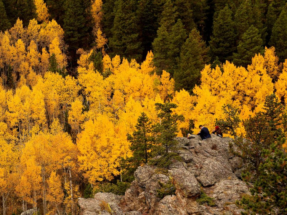 PHOTO: People sit among Aspen trees turned gold on the Autumn Equinox in the northern hemisphere near Nederland, Colo., Sept. 22, 2017.