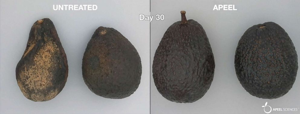 PHOTO: An image from Apeel Sciences shows treated and untreated avocados.