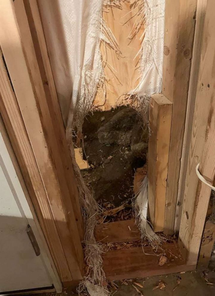PHOTO: This image, posted to the Estes Park Police Department Facebook page on August 10, 2019, shows the hole where a bear broke into a house in Estes Park, Colorado.
