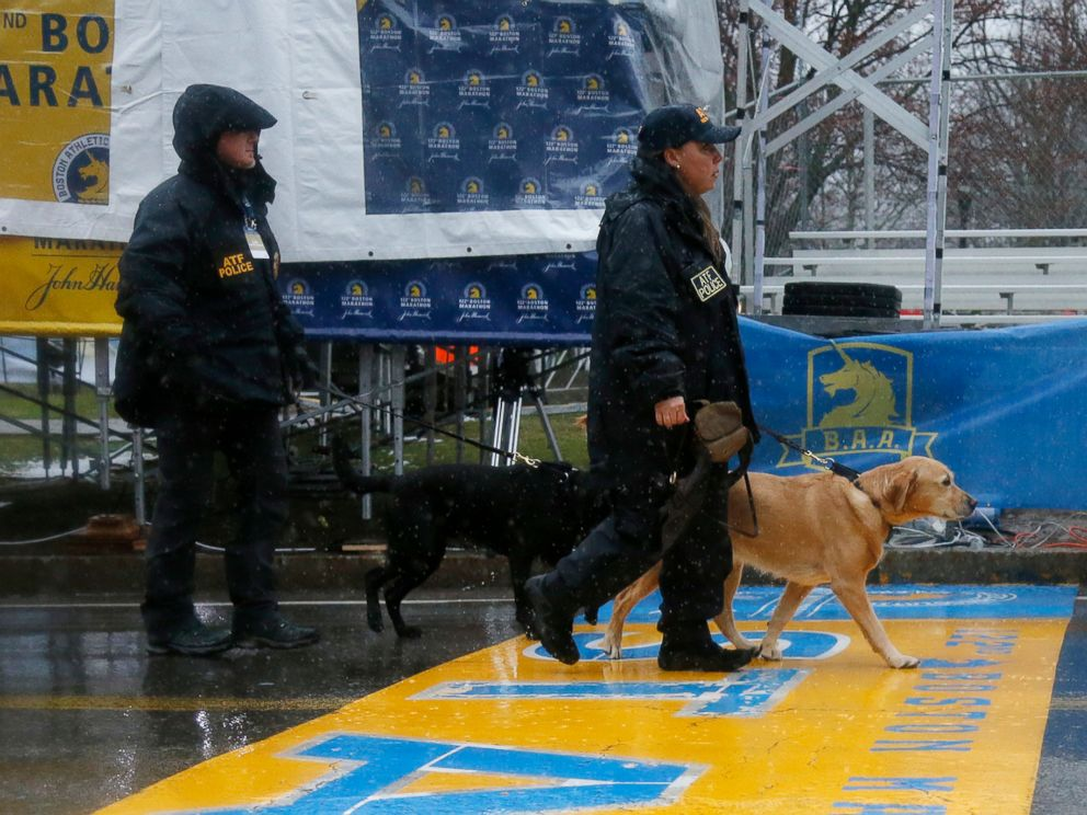 PHOTO: ATF K-9 units cross the start line during a security patrol before the start of the 122nd running of the Boston Marathon in Hopkinton, Mass., April 16, 2018.