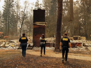 Homeless Paradise official vows town 'will rebuild' after deadly Camp Fire