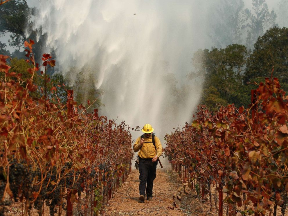PHOTO: Firefighter Chris Oliver walks between grape vines as a helicopter drops water over a wildfire burning near a winery, Oct. 14, 2017, in Santa Rosa, Calif.
