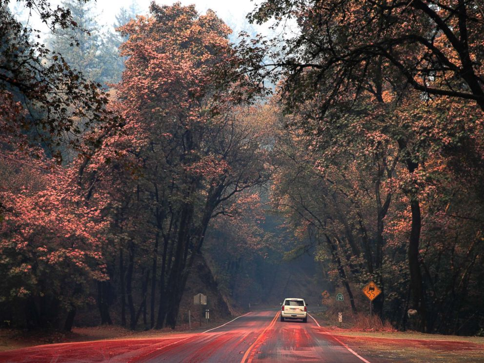 PHOTO: An SUV passes trees covered in fire retardant as wildfires continue to burn, Oct. 12, 2017, near Calistoga, Calif.