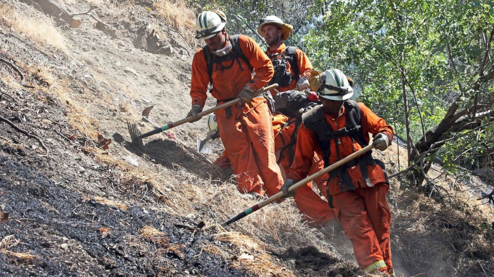 Firefighters clear burned and unburned brush from a hillside above Portola Drive after a wildfire broke out in the Benedict Canyon area of Los Angeles, June 12, 2018.