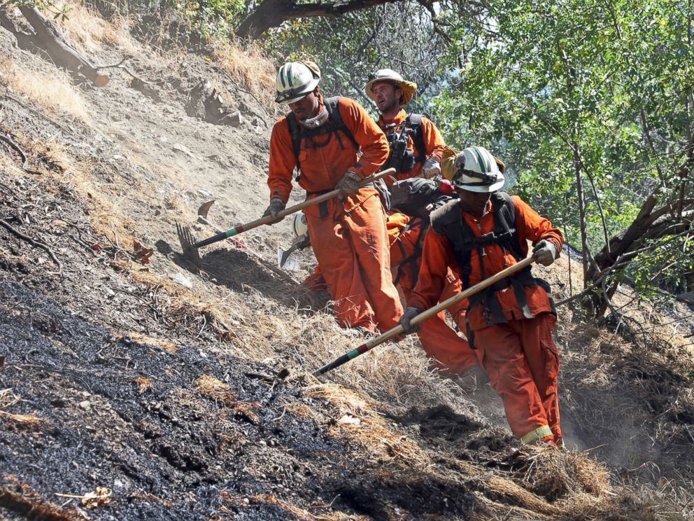 PHOTO: Firefighters clear burned and unburned brush from a hillside above Portola Drive after a wildfire broke out in the Benedict Canyon area of Los Angeles, June 12, 2018.