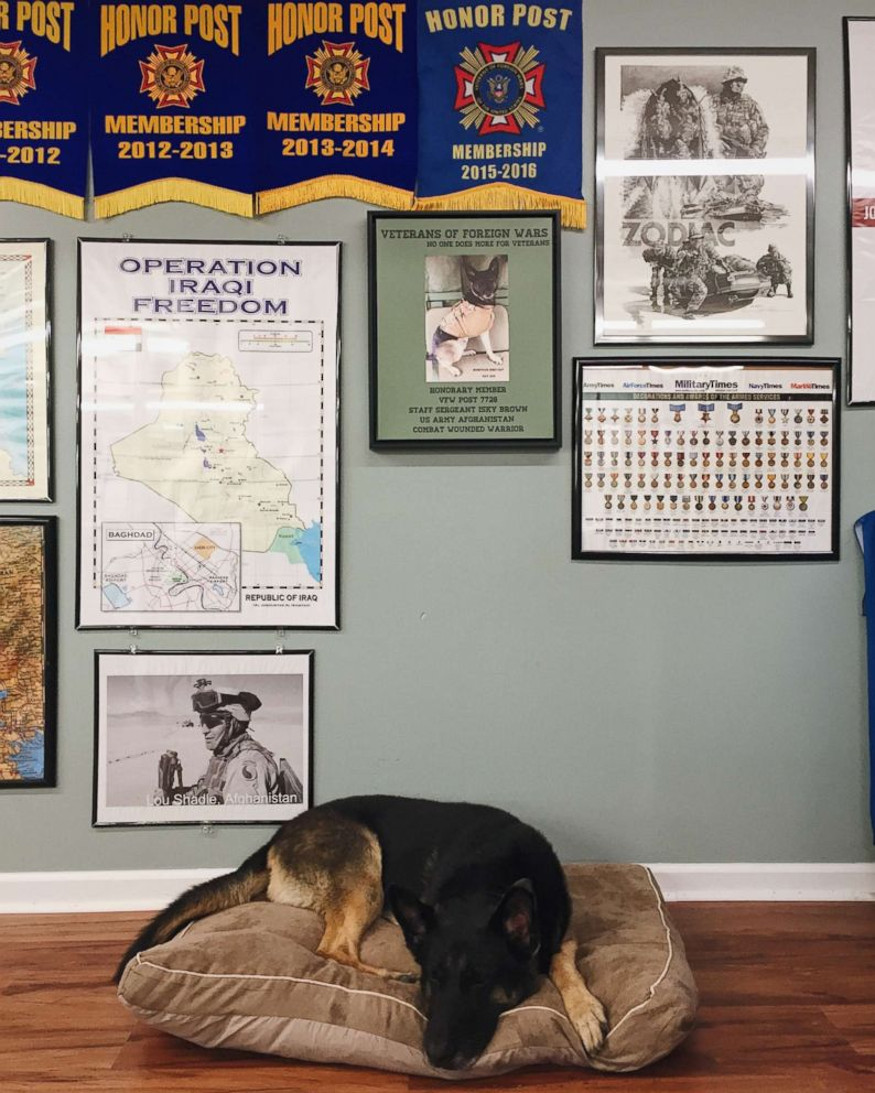 PHOTO: Isky Brown resting at VFW Post 7728 in Morrisville, VA.