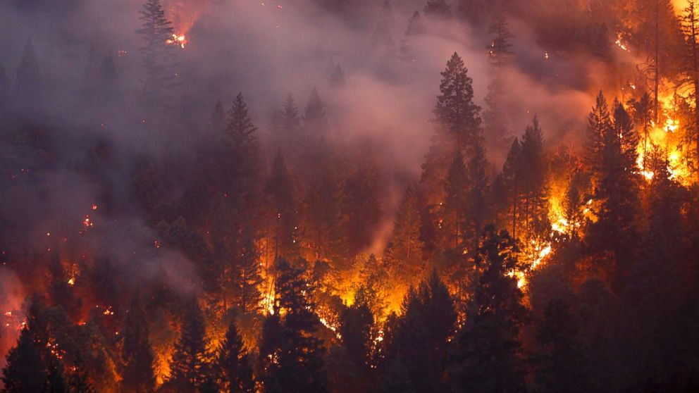 'Undeniable link to climate change' in California's Carr fire, expert says