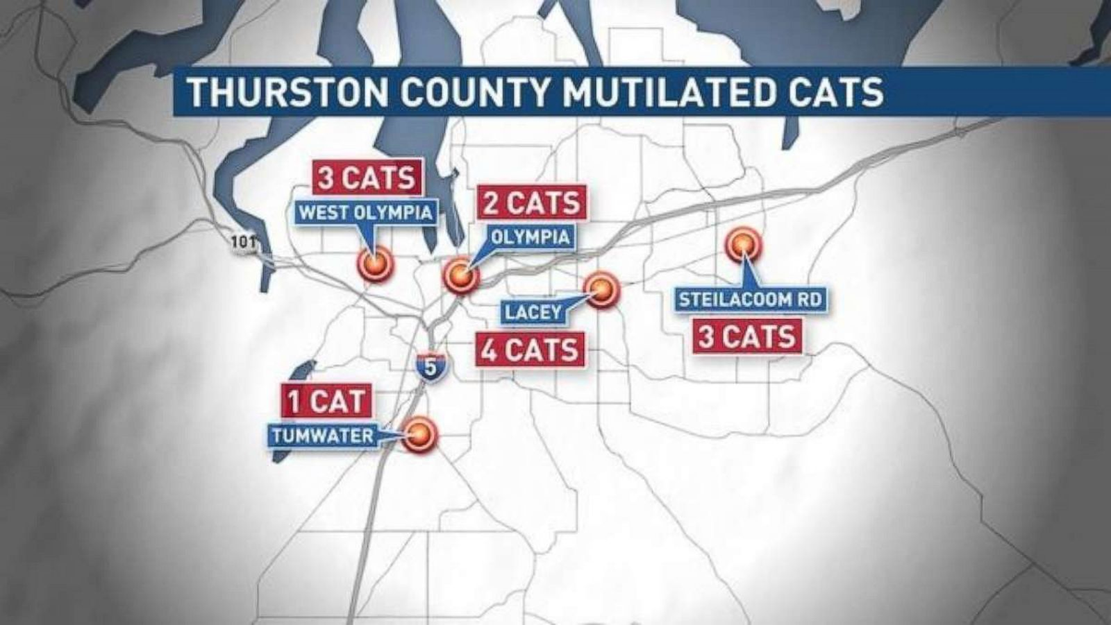 Serial cat killer? Mutilated cat believed to be 13th in string of