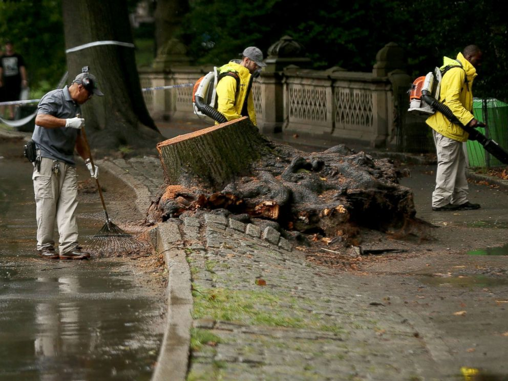 PHOTO: Central Park workers clean up around an area where a massive tree came down injuring a mother and her three young children, Aug. 15, 2017, in New York City.