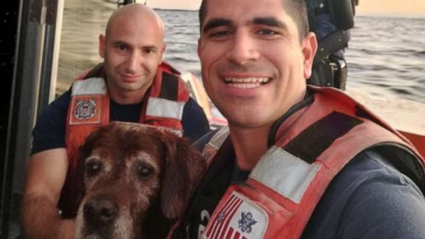 Coast Guard saves lucky dog swimming off Florida beach