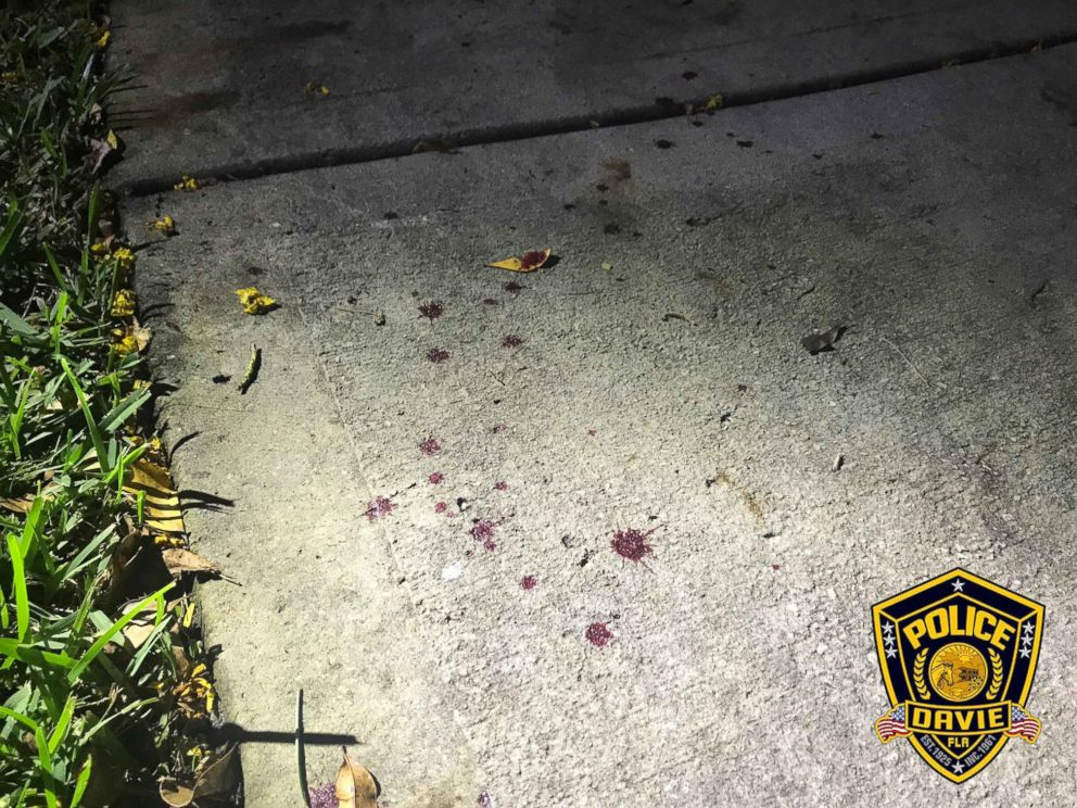 PHOTO: The spot where an 8-month-old puppy named Princes was allegedly shot by Johansen Concepcion De La Ros in Davie, Fla., Sept 29, 2018.