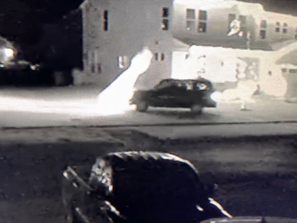 PHOTO: Police in Greenwood, Indiana, are searching for a driver seen plowing through Christmas decorations in the front yard of a home.
