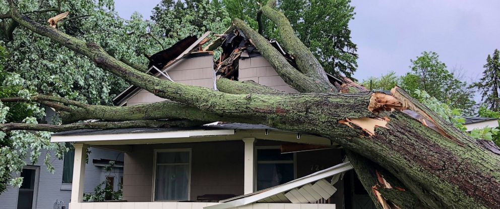 PHOTO: In Rochester, Mich., outside Detroit, winds over 60 mph downed trees and power lines.