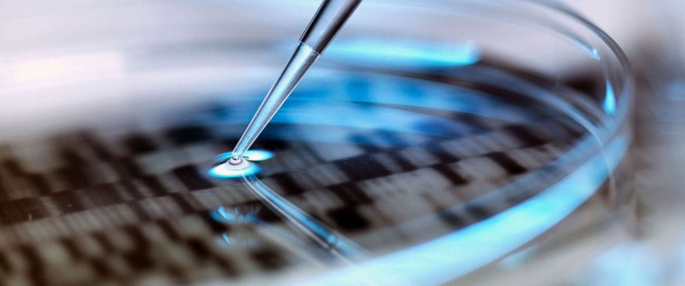 PHOTO: A stock photo depicts DNA testing in a petri dish.