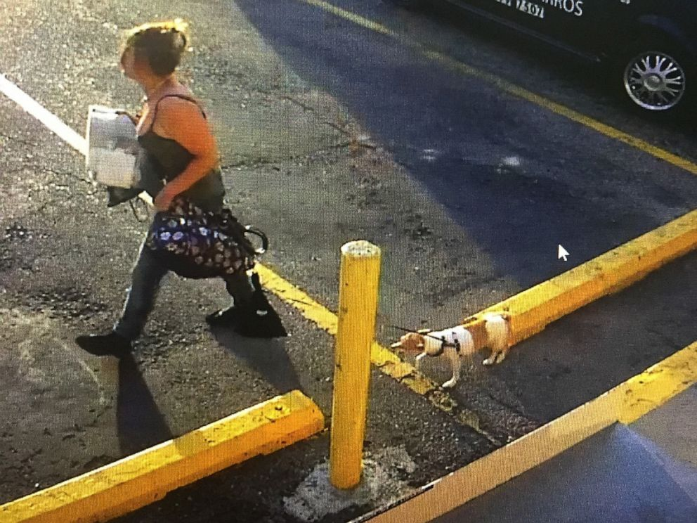 PHOTO: Authorities are searching for a woman caught on camera taking a dog from a 7-Eleven in Longmont, Colorado, after its owner had a seizure.