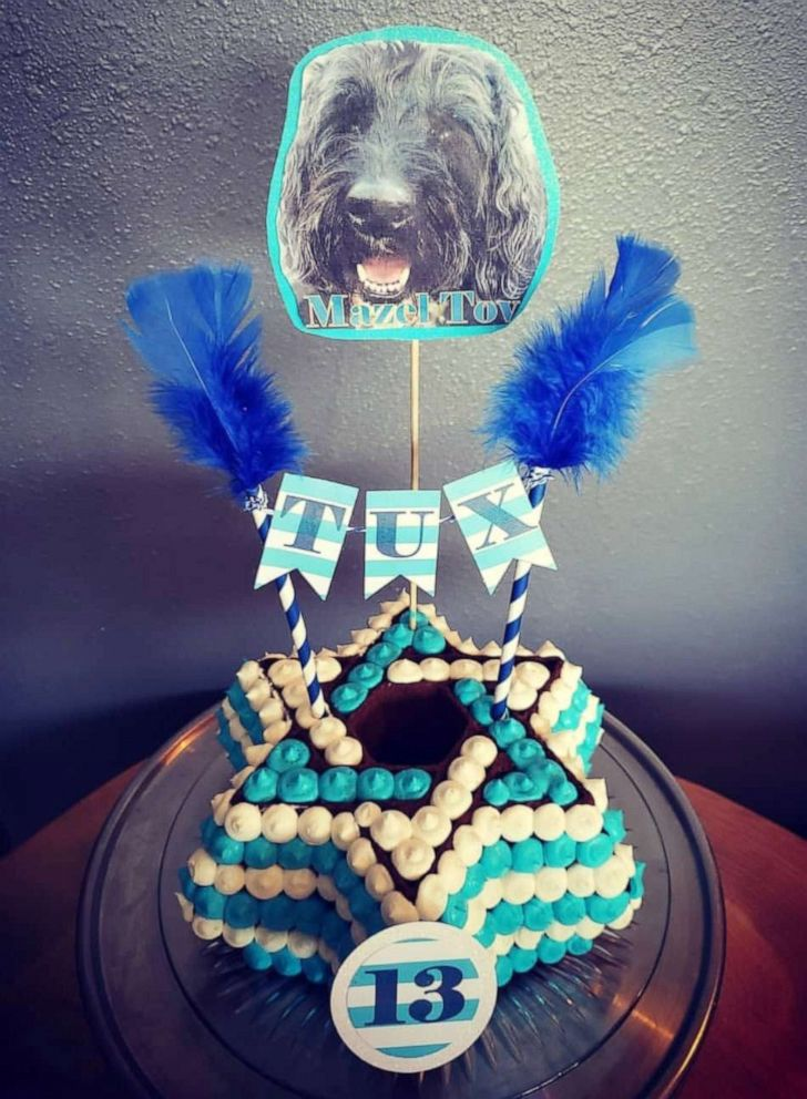 PHOTO: The dog bakery makes cakes for all occasions, including Gender Reveal parties and Bark Mitzvahs.