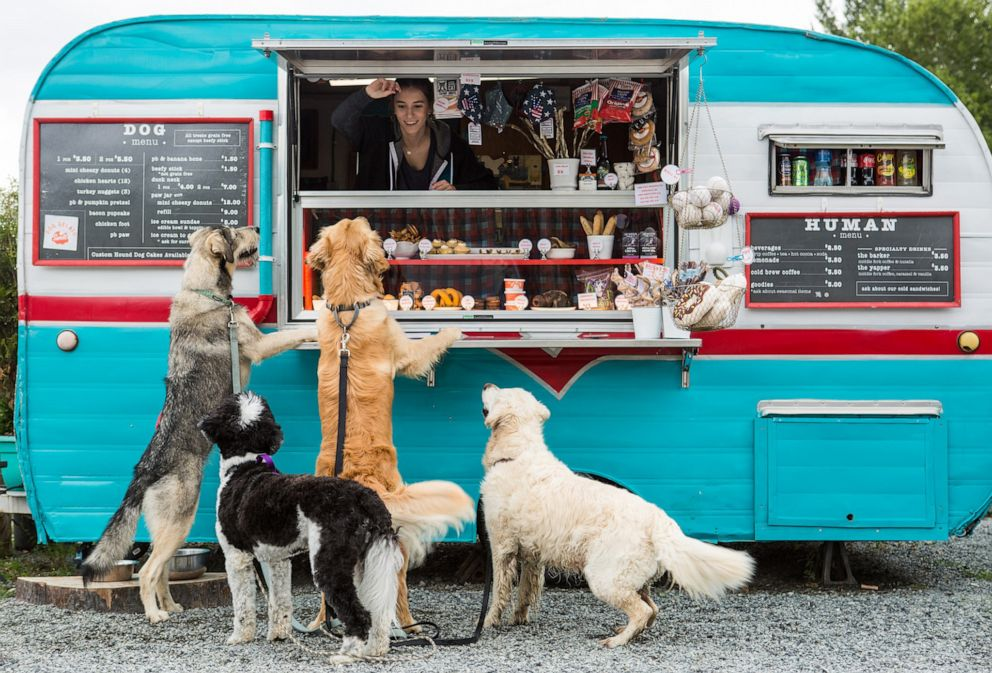 PHOTO: The companys treat trailer, nicknamed Hammy sits permanently outside one of the largest dog parks in Seattle.