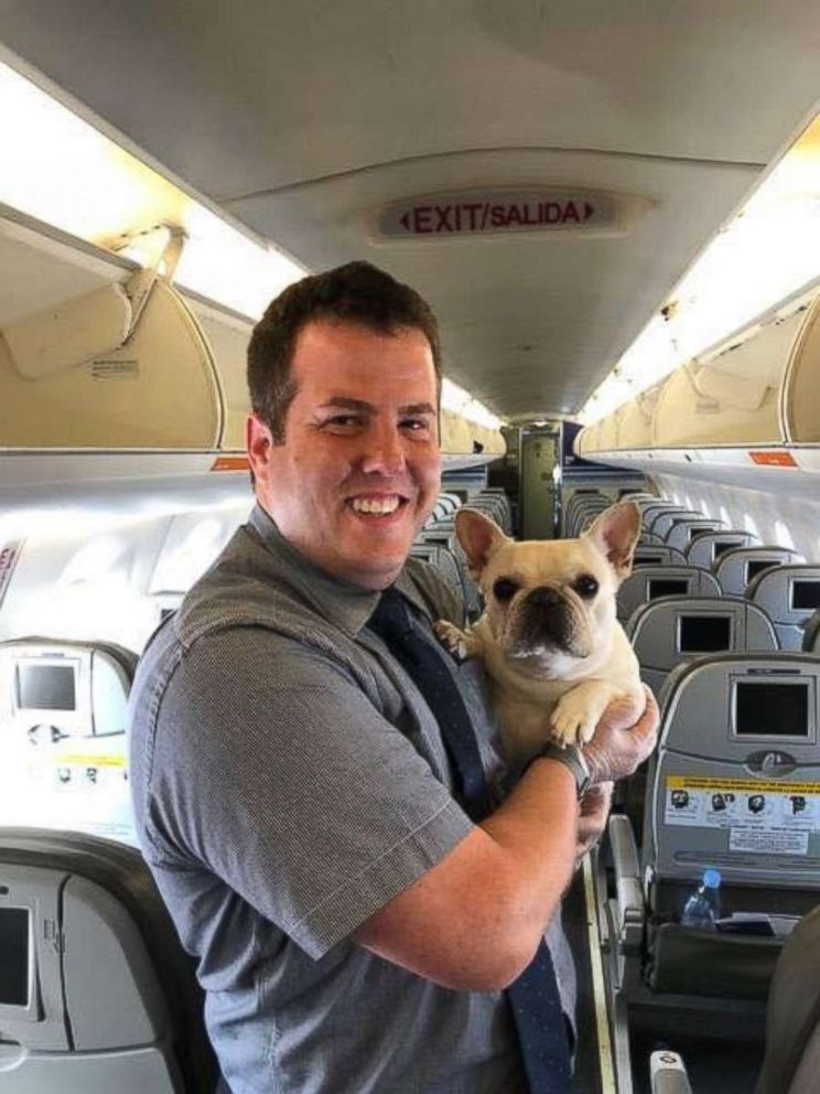 One of JetBlues flight attendants poses with Darcy after the bulldog received oxygen on a JetBlue flight Thursday, July 5, 2018.