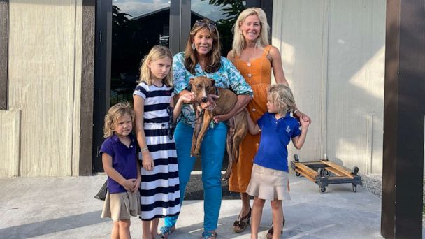 Dog found in Bahamas rubble 3 weeks after Hurricane Dorian is adopted by Florida family