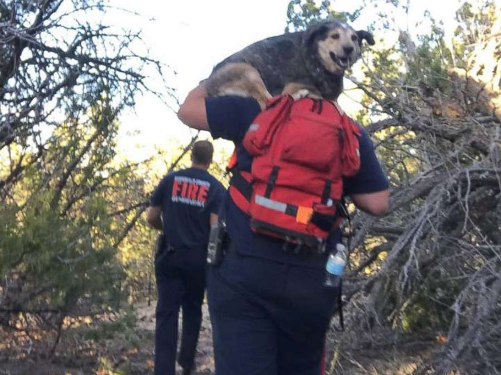 PHOTO: Firefighters use drone to rescue stranded hikers and an injured dog, May 12, 2018 at the Otero Canyon in New Mexico.